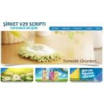 Şirket Scripti V29